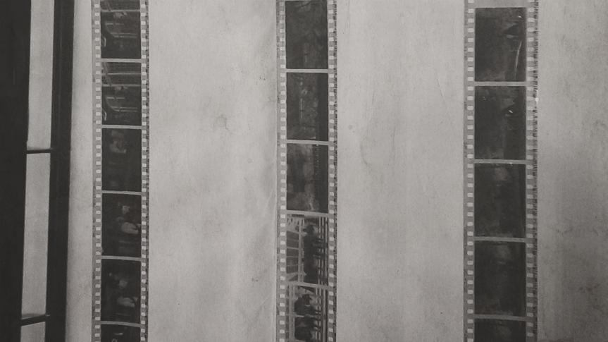 Film Photography / Black & White Darkroom processing / Kodak TRI-X 400
